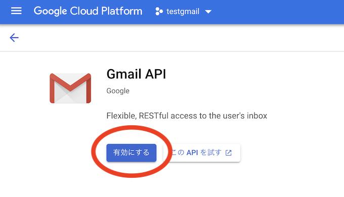 Google Cloud Platform Gmail 手順